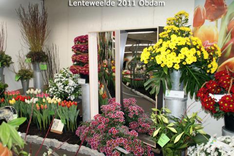 Nice arrangement between the flowers and tulips.
